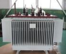 distribution transformer--Power Transformers Encyclopedia
