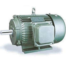 An Induction Motor