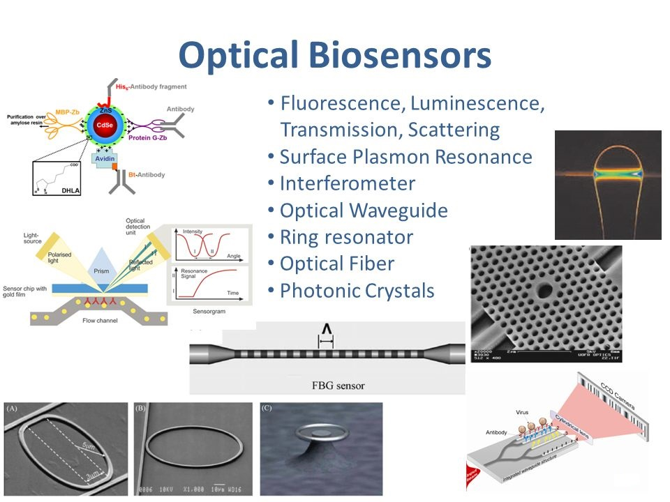Optical biosensor