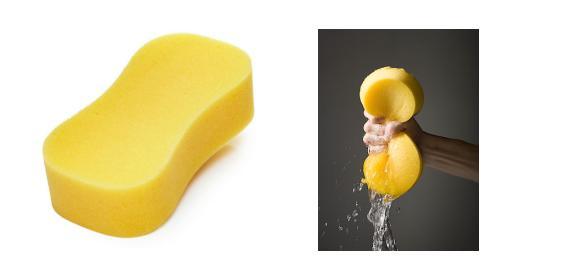 Figure 4. Water Absorbing Sponge