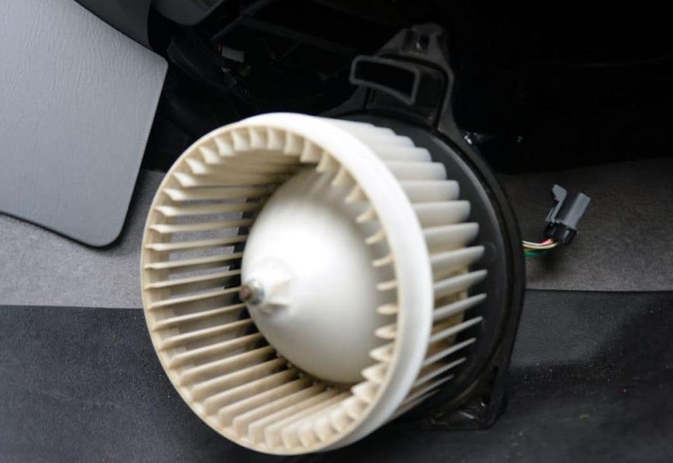 the-fan